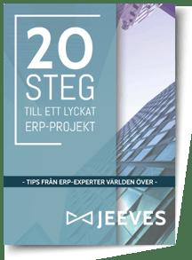 20-steg-Cover
