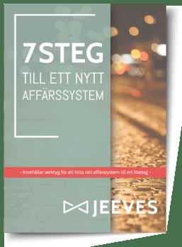 7-steg-Cover